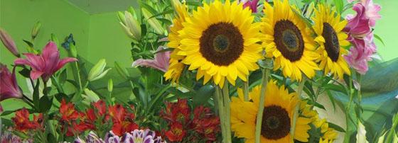Магазин за цветя Фиоре