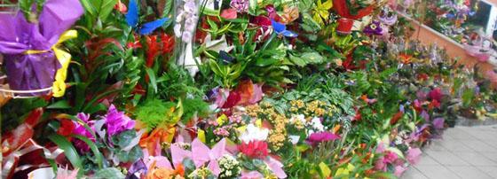 Магазин за цветя Флора