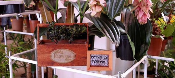 Магазин Florans