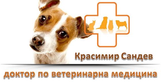 Доктор Красимир Сандев