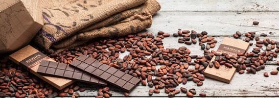 Шоколадова Работилничка Фантазия
